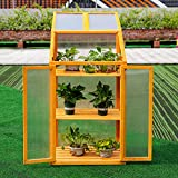 The Fellie Wooden Cold Frame Outdoor Polycarbonate Garden Mini Greenhouse Raised Vegetable Bed Planter, 69Lx49Wx120H(cm)