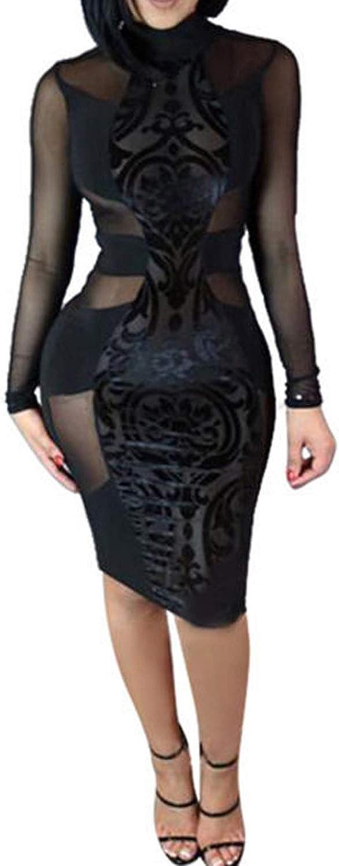 Springcmy Women's Dress Mesh See Through Long Sleeve Turtleneck Bodycon Clubwear Dress