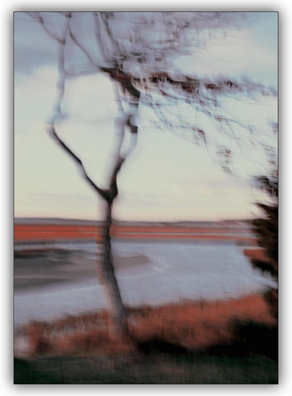 16 16 16 Foto Karten (16er Set)  Wunderschöne herbstliche Foto Grußkarte  Blowing in the wind B00VQPJTQY   Großer Räumungsverkauf  fbc50f