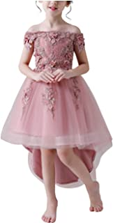 Surprise S Dresses for Girls Wedding Dress Lace Teenagers Embroider Party Dress for Christmas s Costumes