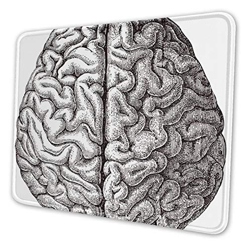 Juzijiang Alfombrilla De Ratón Cerebro Humano médico, Alfombrilla Gaming, Base De Goma Antideslizante para Gamers, Pc Portátil - 24x20cm