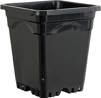 Active Aqua HG9X9SB Vaso Quadrato, 23 x 23 cm, Altezza 25,5 cm, 24 per Confezione, Nero