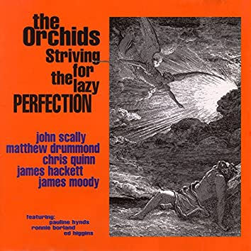 Striving For The Lazy Perfection