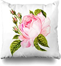 Ahawoso Throw Pillow Covers Rosaceae Watercolor Bouquet Vintage Rose Botanical William Floral Pink Morris Antique Autumn Drawing Home Decor Pillow Case Square Size 16 x 16 Inches Zippered Pillowcase