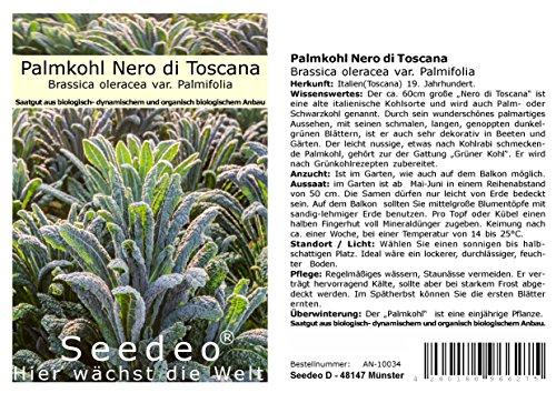 Seedeo® Palmkohl Nero di Toscana (Brassica oleracea var. Palmifolia) ca. 150 Samen BIO