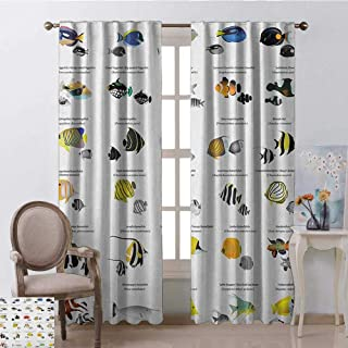 youpinnong Ocean, Curtains Set of 2, Collection of Different Fish Species Underwater Aquatic Educational Picture, Curtains in Living Room, W108 x L108 Inch, Yellow Blue Black