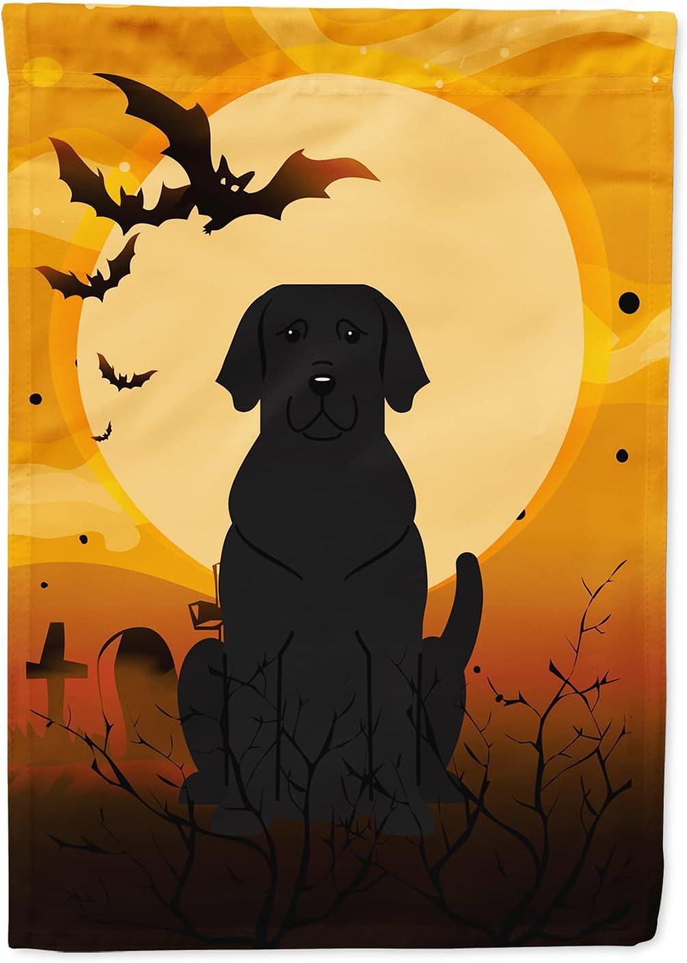 Caroline's Sacramento Mall Treasures BB4323GF Halloween Labrador Black Flag Gard Popular product
