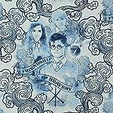 Jersey Stoff Harry Potter, Charaktere weiß/blau (50cm x