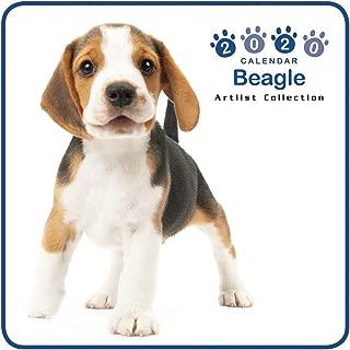 The Dog Mini Wall Calendar 2020 Beagle