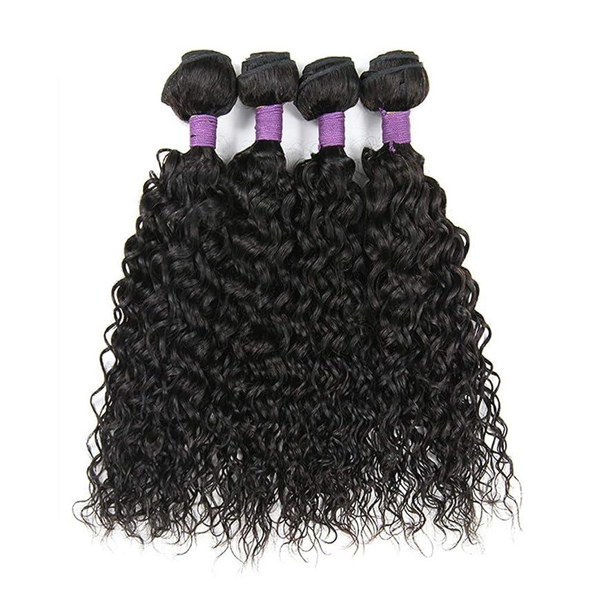 自我一貫性のないスキム毛織り130%密度ブラジルの変態カーリーヘアバンドルブラジルの髪1バンドルブラジル人毛