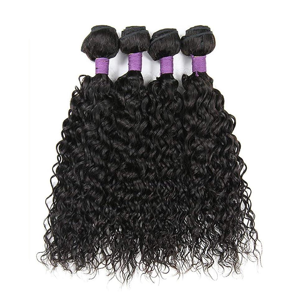 比率時々時々ズボン毛織り130%密度ブラジルの変態カーリーヘアバンドルブラジルの髪1バンドルブラジル人毛