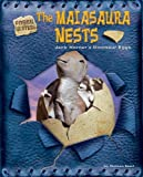 The Maiasaura Nests: Jack Horner s Dinosaur Eggs (Fossil Hunters)
