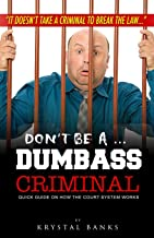 Don't Be A Dumbass Criminal: Quick guide on how the court system works