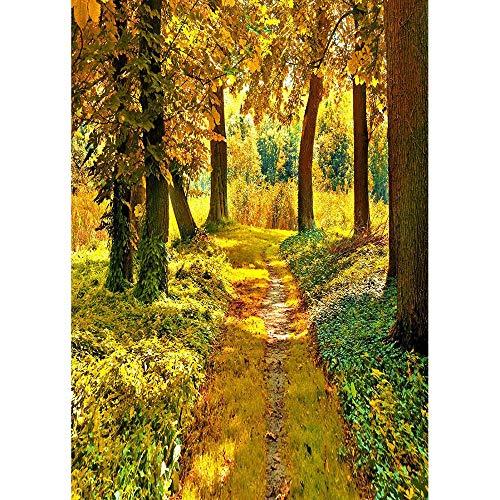 Autumn Forest Photography Backdrops Wooden Bridge Photo Background 3D Vinyl Cloth Printer for Studio Photo A2 5x3ft/1.5x1m