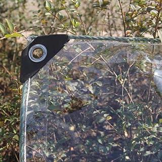 YLJYJ Lona Transparente Cubierta de Lluvia de Vidrio Aislamiento Toldo de jardín Agujero de Metal PVC Resistente, 14 tamaños (Color: Transparente, Tamaño: 2 x 4 m)
