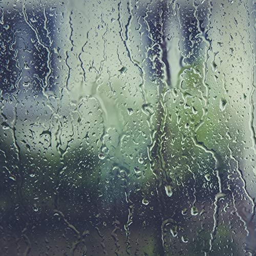 It's Raining, sound of rain & Relaxing Nature Ambience