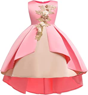 89f76a9cd15 Flower Little Big Girls Lace Bridesmaid Dress Kids Wedding Party Birthday  Pageant Toddler Princess Formal Dresses
