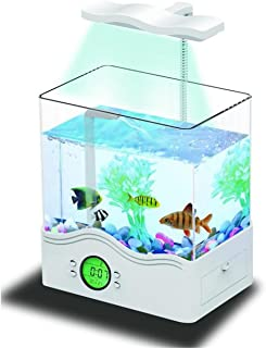 YANFEI 6L Desktop Mini Eco Planta Potencia Interna Iluminación Acuario Transparente Desktop Creative Regalo Fish Tank