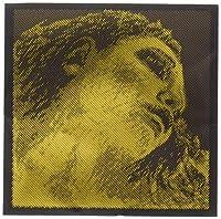 ピラストロ EVAH PIRAZZI GOLD エヴァ ピラッツィ ゴールド ヴァイオリン弦E線 (ボールエンド) 315421