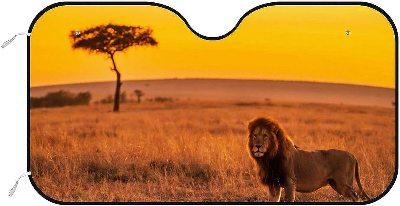 Bargain NONOYES Windshield Sun Shade Lion Genuine on Ca Designs Field Grass Auto