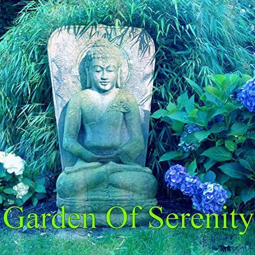 Meditation Zen Master, Meditación Musical & Internal Yoga Music
