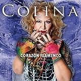 Corazon Flamenco Cd