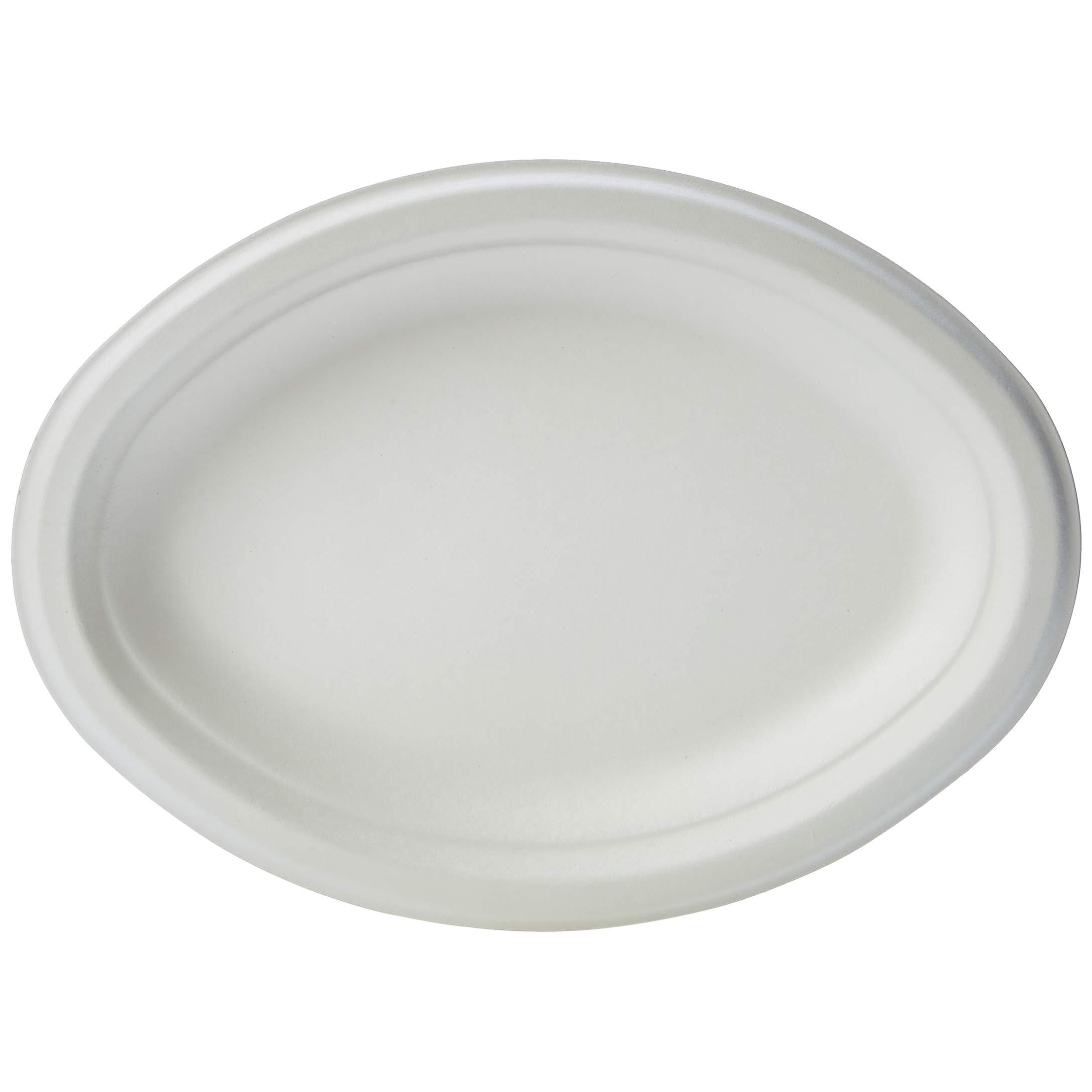 251 & Bulk Disposable Plates: Amazon.com