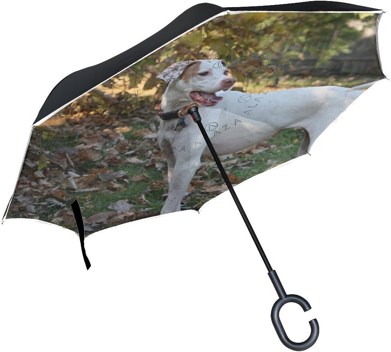 Animal Dog Pointer White Puppy Adorable Real Pet Ingreened Umbrella Large Double Layer Outdoor Rain Sun Car Reversible Umbrella