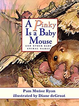 A Pinky Is a Baby Mouse by [Pam Muñoz Ryan, Diane deGroat]