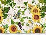 Zanderino ab 1m: Dekostoff, Digitaldruck, Sonnenblumen +