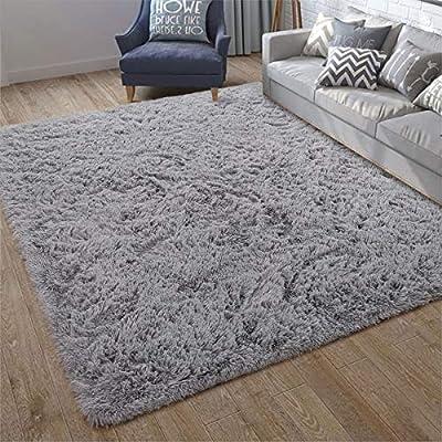 ISEAU Soft Shaggy Area Rug Modern Indoor Fluffy Rugs, Comfy Living Room Carpets, Suitable as Bedroom Rug for Children Home Decor Nursery Rug, 5ft x 8ft, Grey