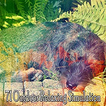 71 Outdoor Relaxing Simulation