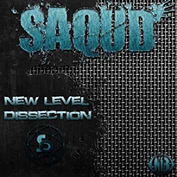 New Level / Dissection