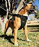 Dog Vest Harness Padded Adjustable Heavy Duty Attachment Links Strong Dog Harness Step in Dog Harness Sport Dog Harness Medium Large Sturdy Any Breed | Pitbull Boxer Husky Rottweiler German Shepherd