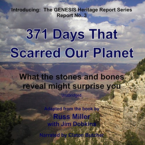 371 Days That Scarred Our Planet audiobook cover art
