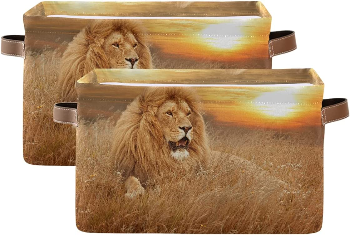 ADAKing Storage Basket Animal Lion Jungle Print 2 Max Outlet ☆ Free Shipping 50% OFF Pc Sunset Canv