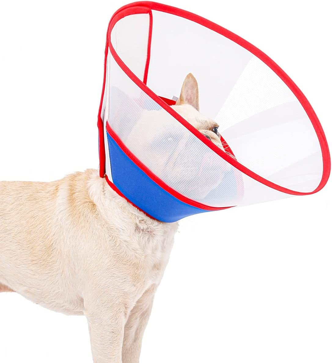 Yiwong Conos de Recuperación para Mascotas, Collar Isabelino para Perros y Gatos, Cuello Protector para Perros y Gatos, Ideal para la recuperación Tras una cirugía, o para Curar heridas