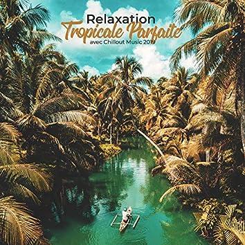 Relaxation Tropicale Parfaite avec Chillout Music 2019