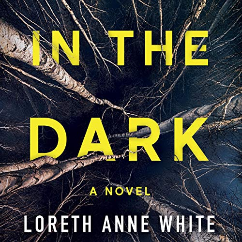 In the Dark cover art