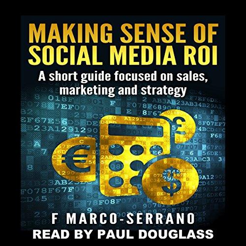 Making Sense of Social Media ROI audiobook cover art
