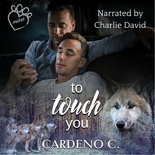 To Touch You audiobook cover art