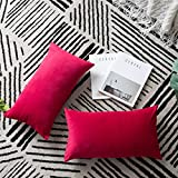 DEZENE Throw Pillow Covers, 2 Pack Super Soft Velvet Decorative Pillow Cases, Luxury Accent Rectangular Pillowcases, Lumbar Cushion Covers for Farmhouse,Couch,Sofa, 12 x 20 Inch, Magenta Red