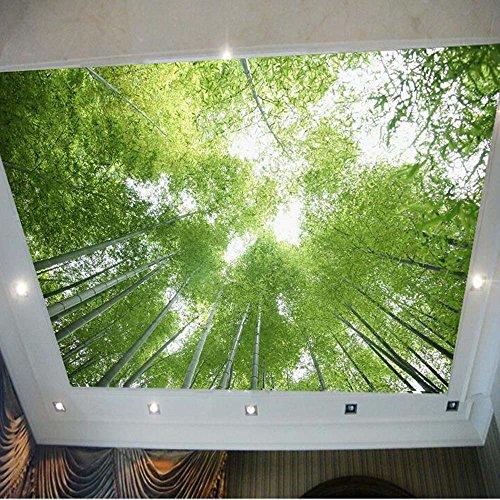 Yosot 3d Grüner Bambus Blauer Himmel Landschaft Decke Fototapete Wandbild Für Wohnzimmer Ktv Bar Wand Dekor Gemälde Landschaft-200 Cmx 140Cm