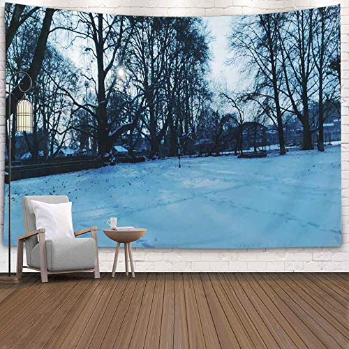 Doocilsh Tapestry Wall Hanging, Tapestries Décor Living Room Bedroom for Home Inhouse by Printed 60X50 Inches Winter Evening in Snow on Road Kashmir India