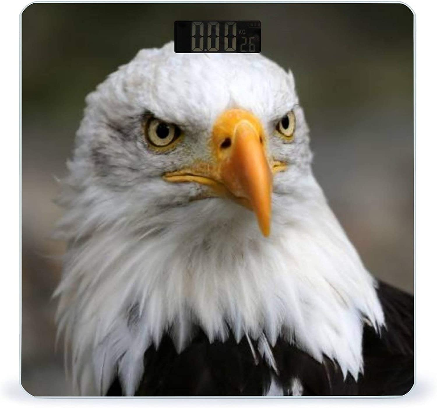 CHUFZSD American Popular overseas Bald Eagle 1 Highly Fitness Accurate Smart Detroit Mall Sc