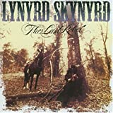 Songtexte von Lynyrd Skynyrd - The Last Rebel