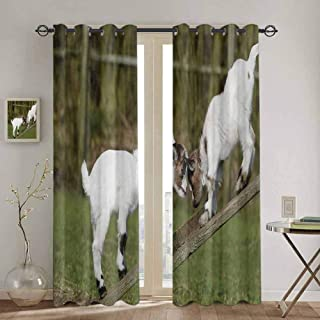 Homrkey Animal Black Out Window Curtain 2 Panel Two Cute Little Baby Goats on a Bench with Their Horns Picture Image Design Rustic Curtain W42 x L90 Inch White and Green