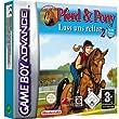 dtp Entertainment Pferd und Pony 2 GBA-Adventure Spiel Test