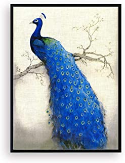 peacock framed pictures