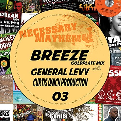 Necessary Mayhem feat. General Levy